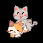 交尾をする猫