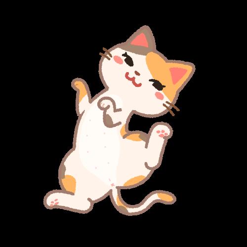 誘うメス猫