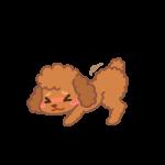 お尻を突き上げるメスのイヌ