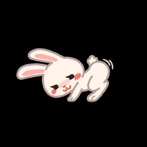 お尻を突き上げるメスのウサギ
