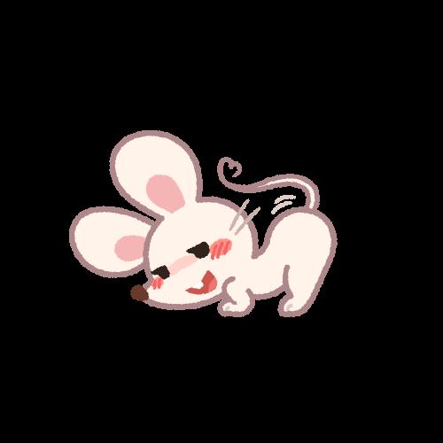 お尻を突き上げるメスのネズミ