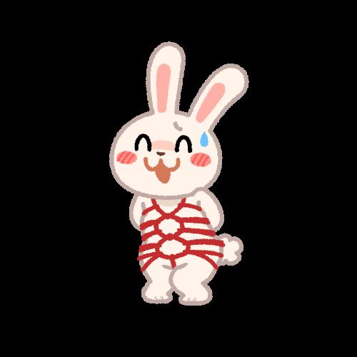 亀甲縛りのウサギ