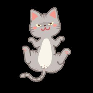 誘うオス猫